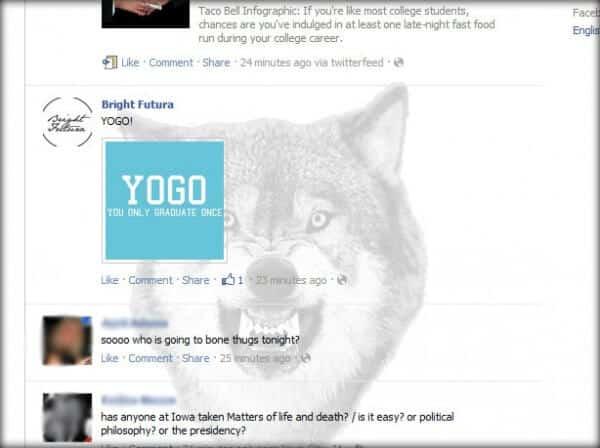 facebook wolf