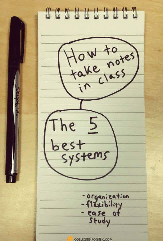 How to study information systems