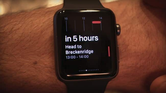 Fantastical Glance on Apple Watch