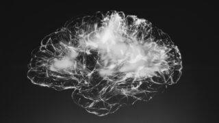 electronic scan of human brain